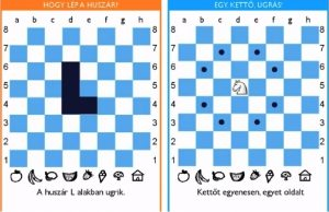 chess palace - Polgar13